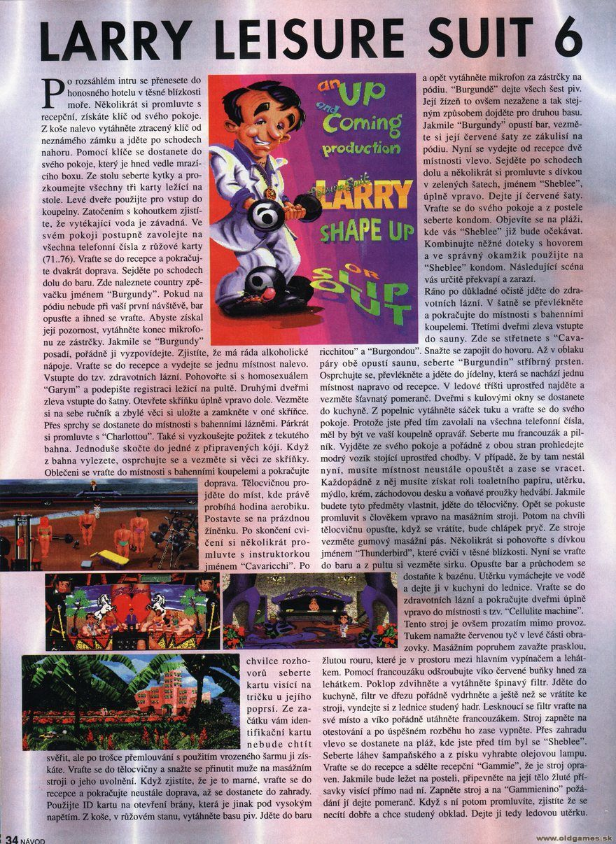 Leisure Suit Larry 6, Návod