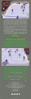 NHL Hockey 96 (2/2)
