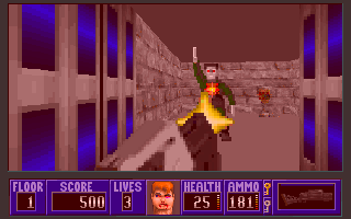 Wolfenstein 3D: Cover of Darkness - The End...