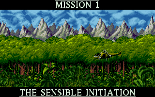DOS, First Mission - The Sensible Initiation