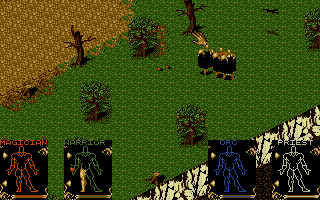 Shadowlands - PC DOS, Level 1 - The Wilderness
