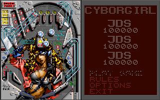 (PC) Cyborgirl - Options