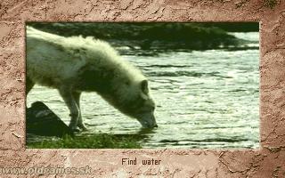 Scenario: Find water