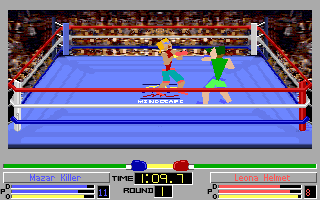 4D Sports Boxing - PC DOS, Boxing...