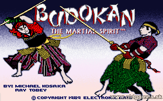 Play online Budokan for PC DOS