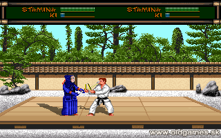 Budokan: The Martial Spirit - PC DOS (VGA)