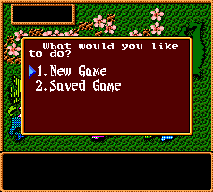 SNES, New Game